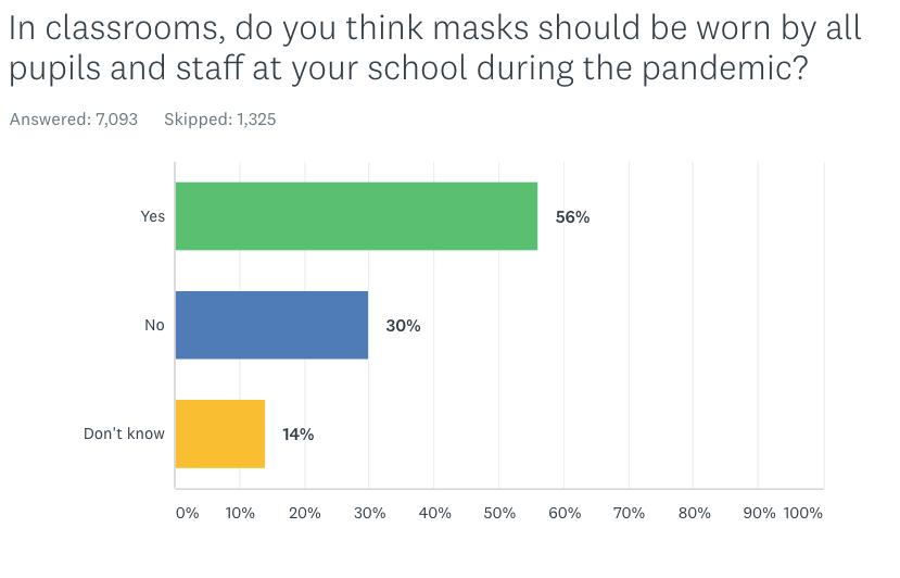 survey masks