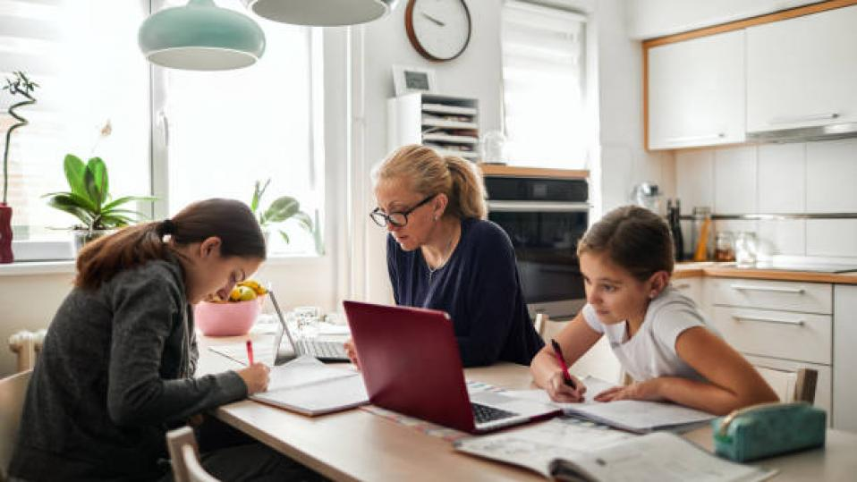 Covid and schools: Third of parents 'struggle with home-schooling'