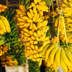 A teacher with a severe allergy to bananas was pelted with the fruit by students