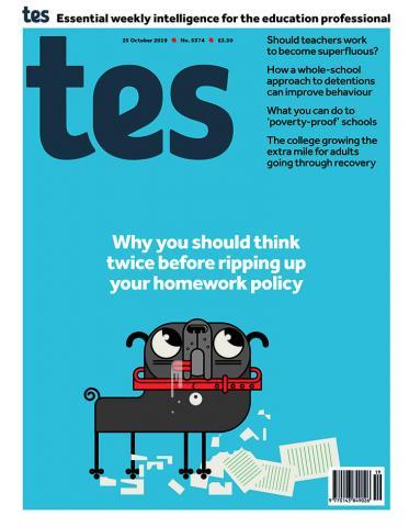 Tes England cover 25/10/19