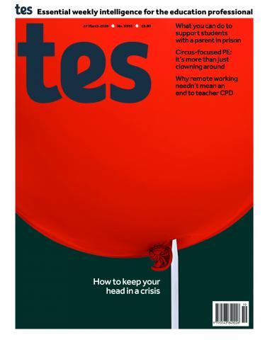 Tes England cover 27/03/20