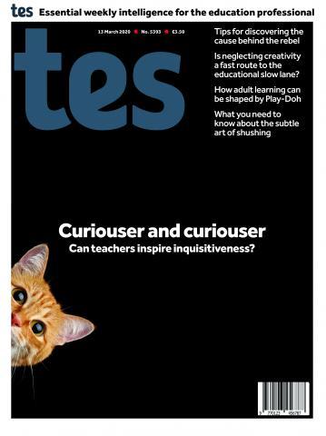 Tes England cover 13/03/20