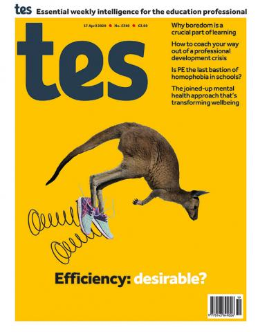 Tes England cover 17/04/20