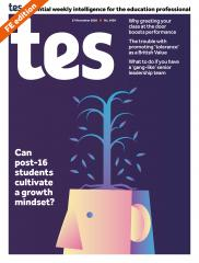 Tes FE cover 27/11/20