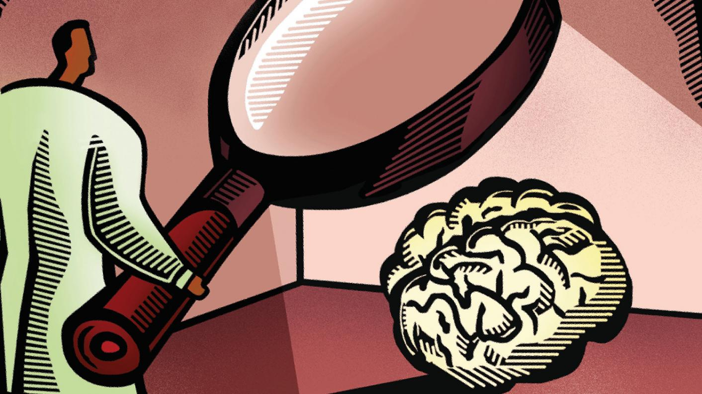 Evolution of the Learning brain looks at whether neuroscience is education's great hope