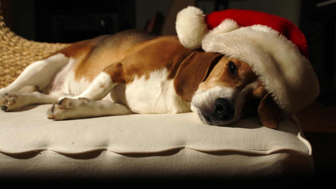 Tired Christmas