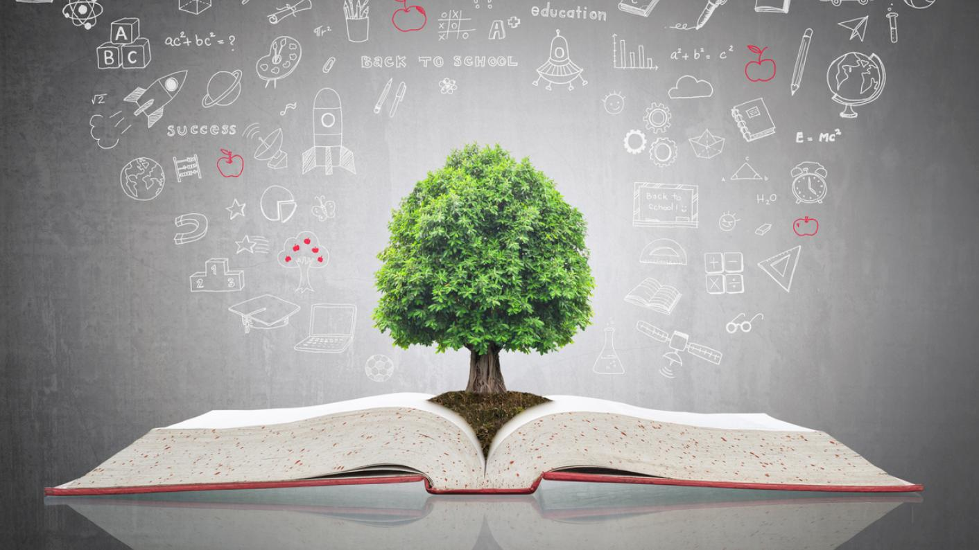 What is Curriculum for Excellence?