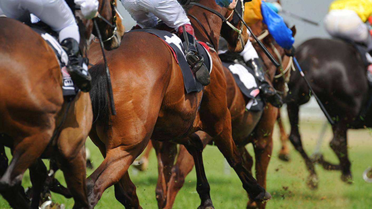 Could Ofqual take inspiration from horse racing?