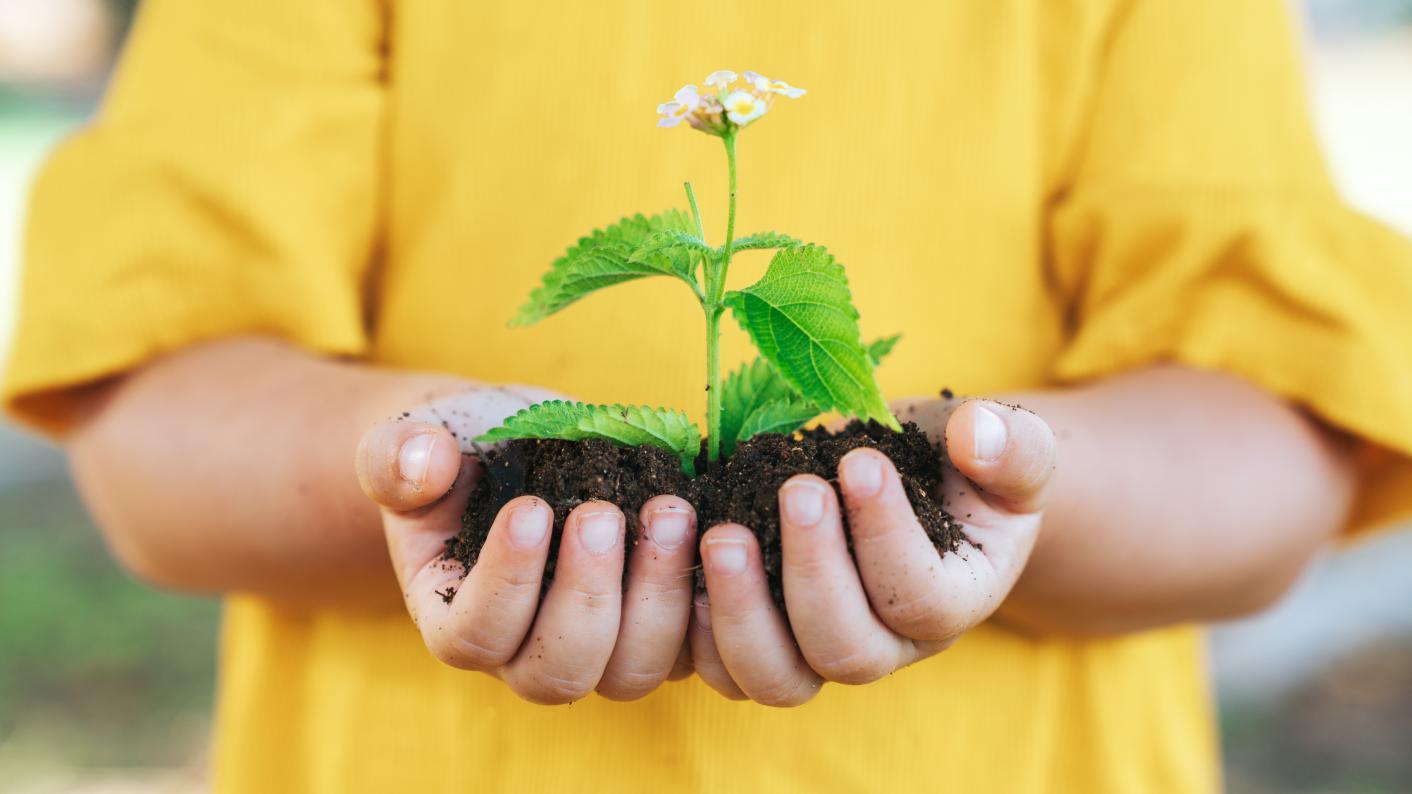 Coronavirus: One teacher explains the benefits of getting vulnerable pupils gardening in lockdown