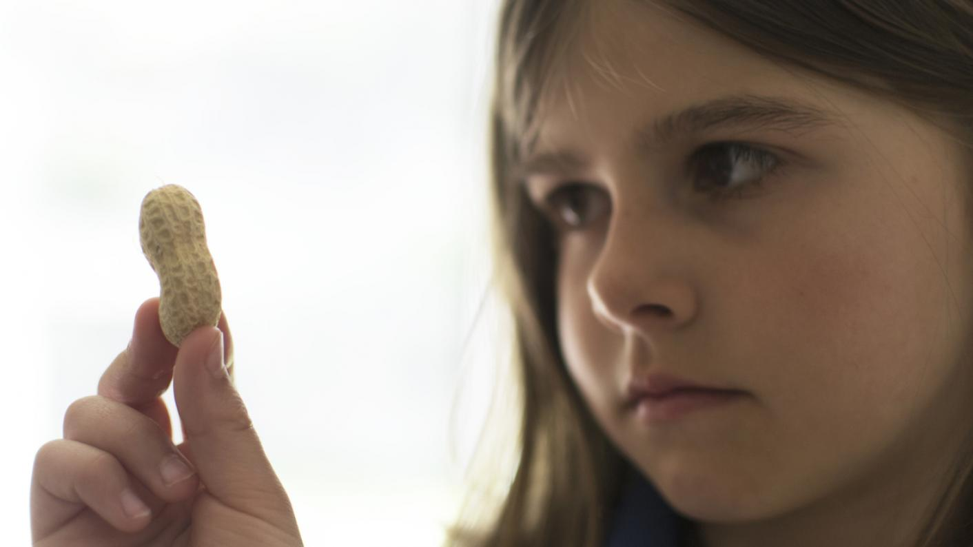 Young girl holds peanut and studies it