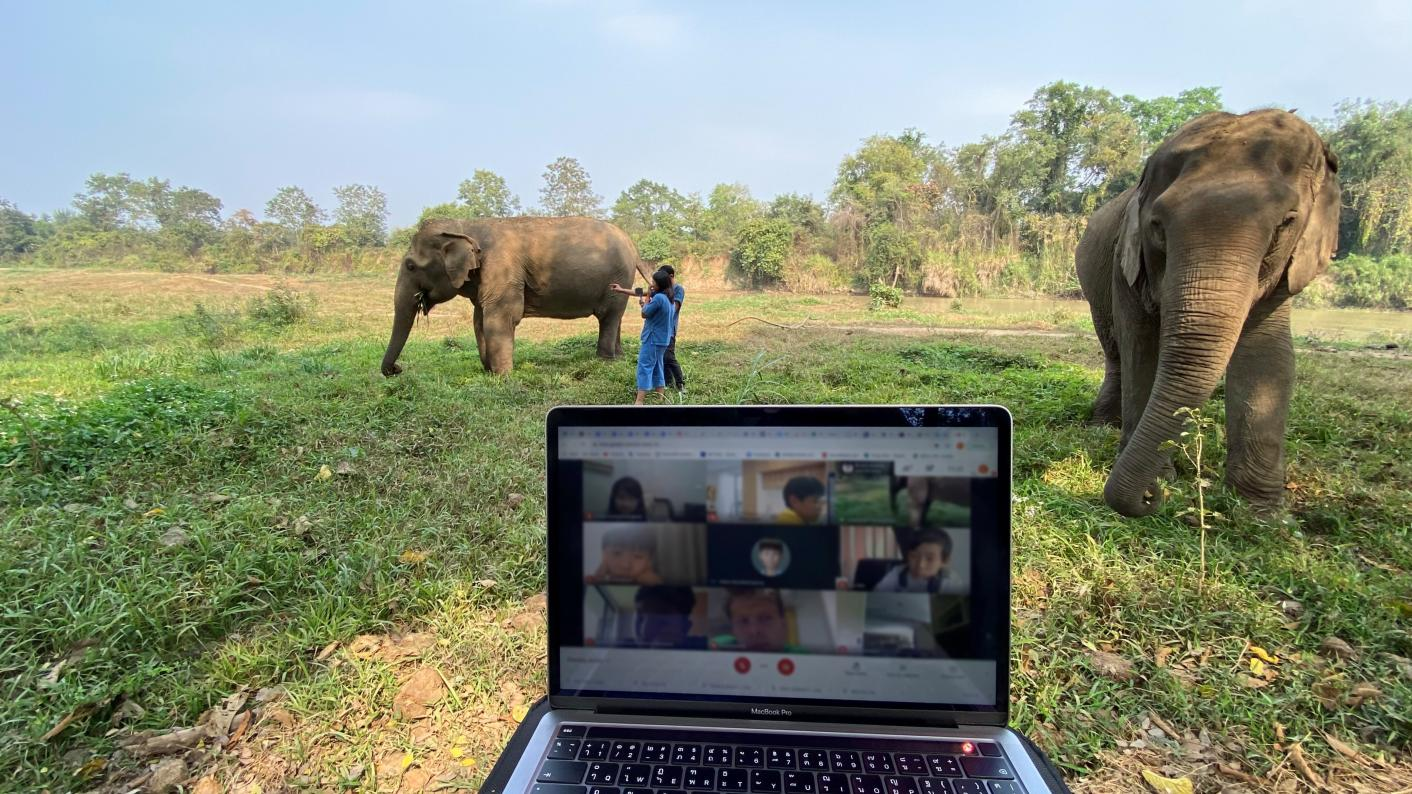 Virtual elephant safaris: A way for schools to teach about environmental sustainability during Covid