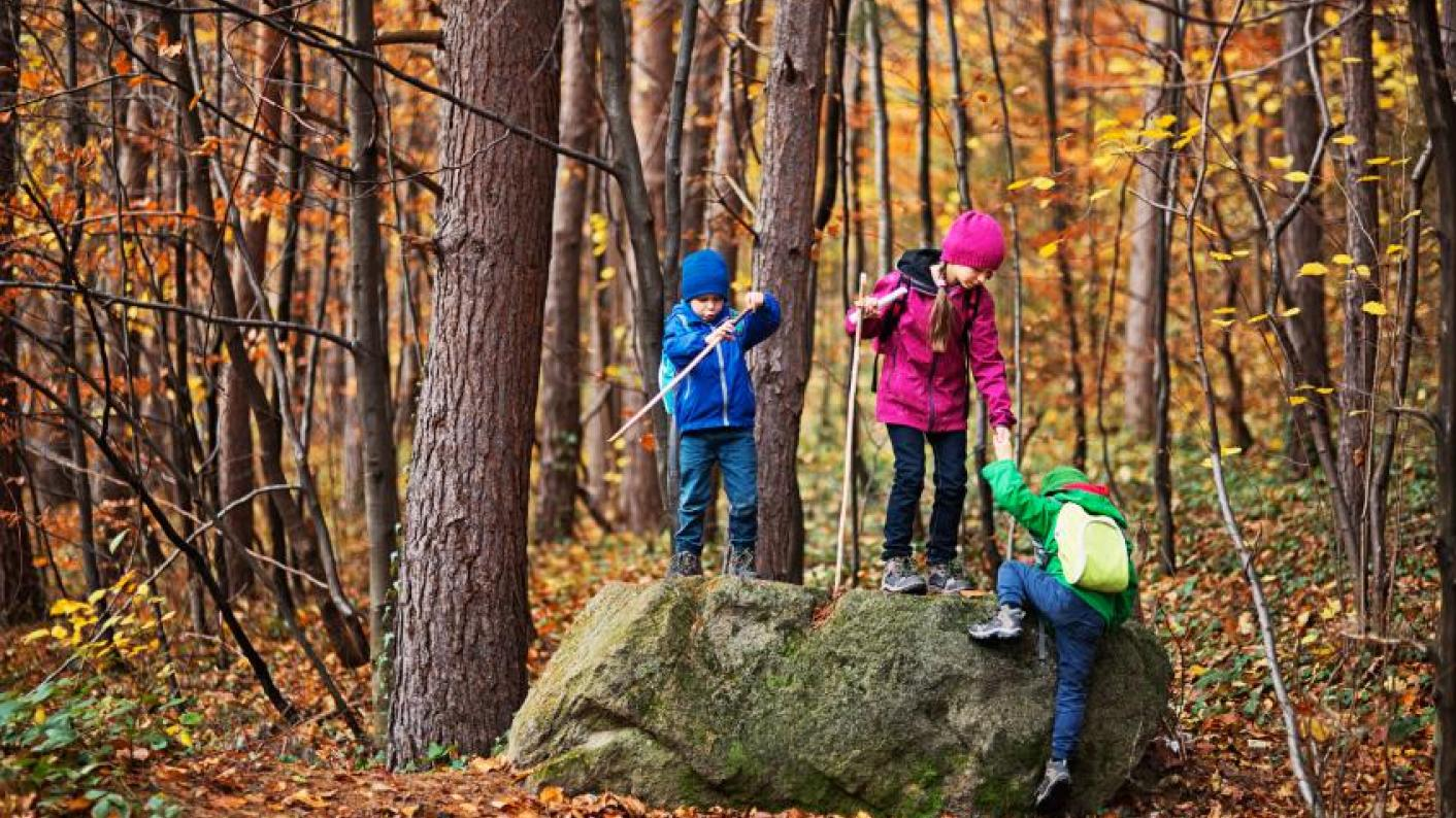 Shinrin-yoku: The science behind 'forest bathing' to boost school pupils' wellbeing