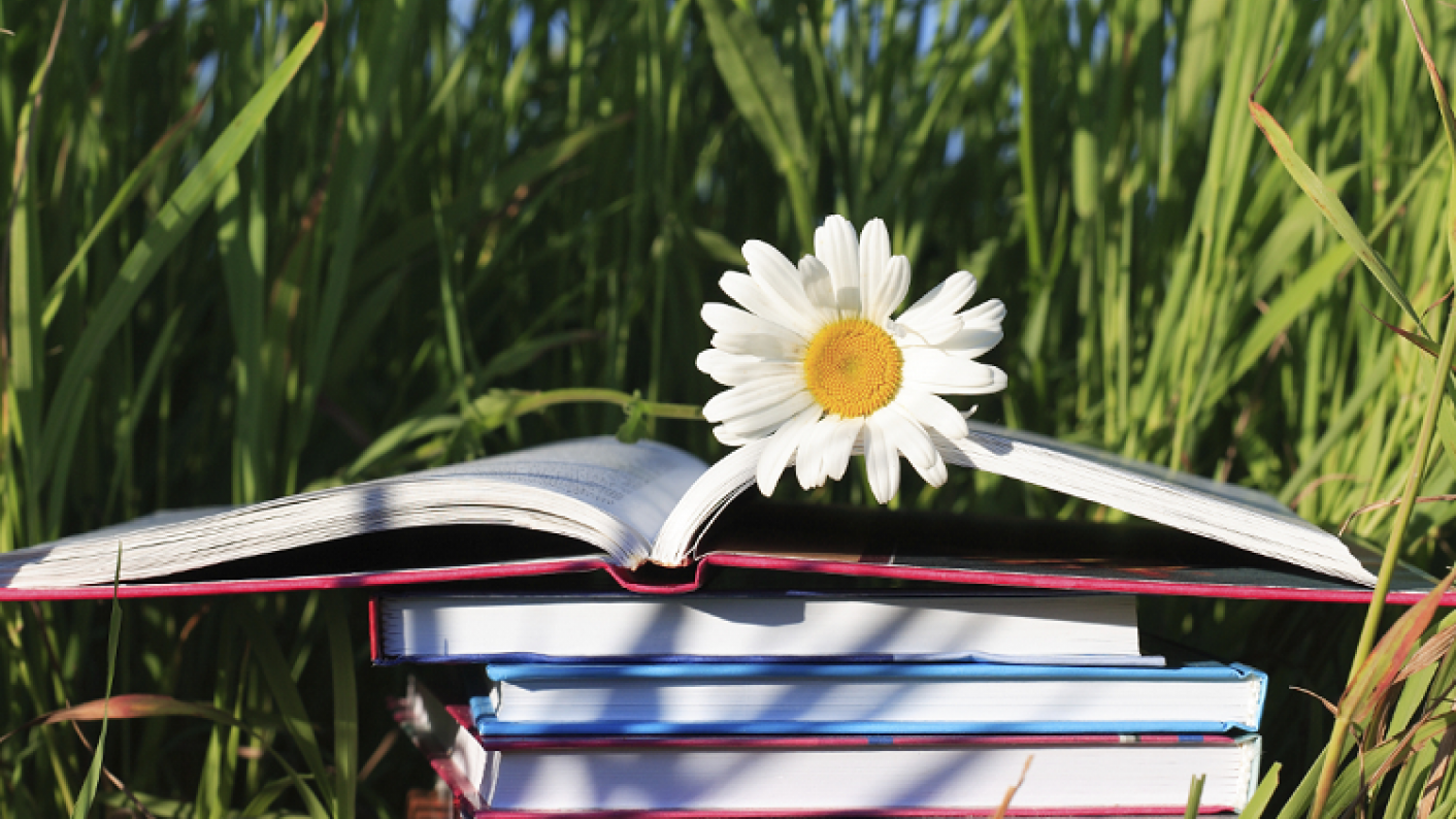 Primary School Book Outdoors During Summer Holidays